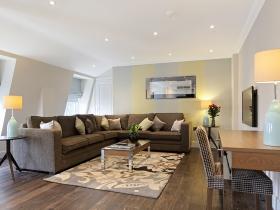 501 Ashburn Suite- living room1.jpg